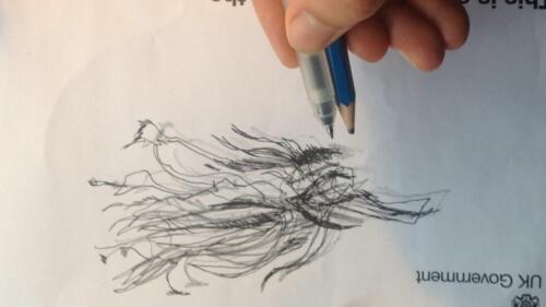 Sarah Observation two pens